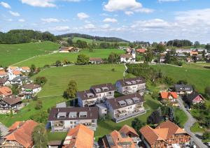 Vogelperspektive Architektur-Visualisierung Neubau Siedlung in Riggisberg
